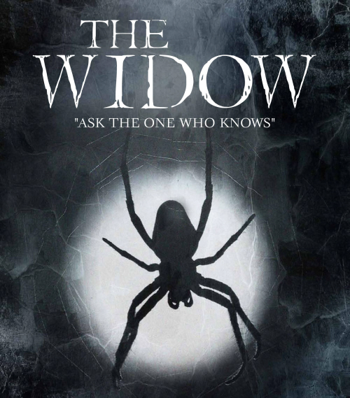 Play Script: 'The Widow' by Merlin Ward